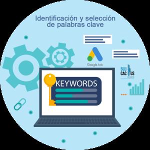Blucactus-Identificación-y-selección-de-palabras-clave