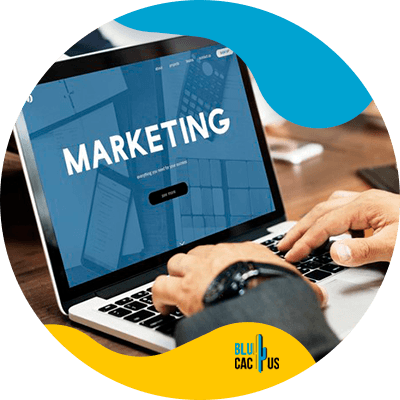 BluCactus - Marketing