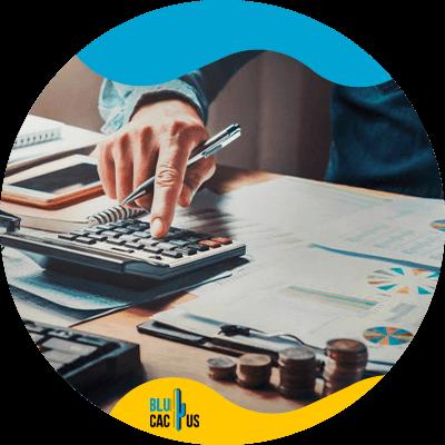 BluCactus - Finanzas