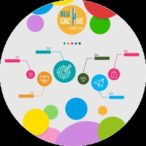 BluCactus - compresion y simplificacion de conceptos