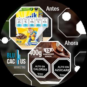 BluCactus - ejemplo de como funciona la norma