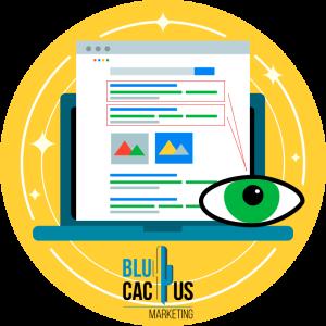 BluCactus-Por-qu®-el-SEO-es-importante-para-mi-sitio-web-1-Multiplica-tu-visibilidad.