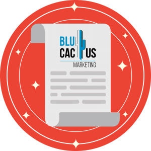 BluCactus-12-Conclusi¦n