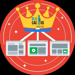 BluCactus--Crea-contenido-de-calidad