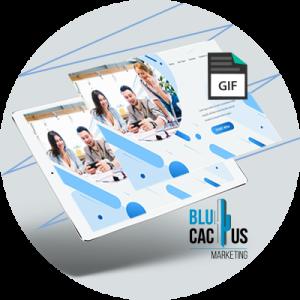 BluCactus - 20 Tendencias del Diseño Web - animacion de ejemplos de diseño