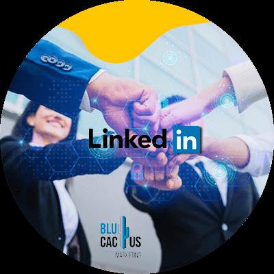 BluCactus - hombre profesionales reunidos