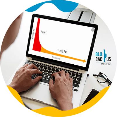 BluCactus - White Hat SEO - apuesta por eestrategias