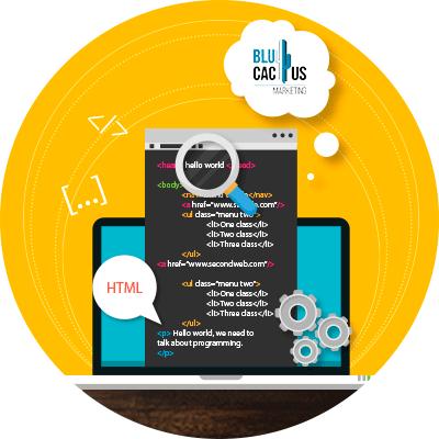 BluCactus - White Hat SEO - codigo html