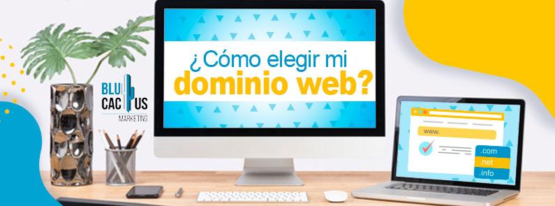 Blucactus - ¿Cómo elegir mi dominio web? - titulo