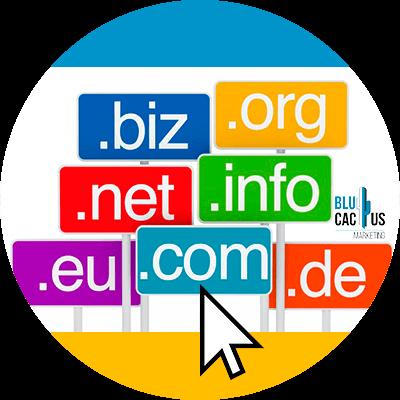Blucactus - ¿Cómo elegir mi dominio web? - ejejemplos de dominios web