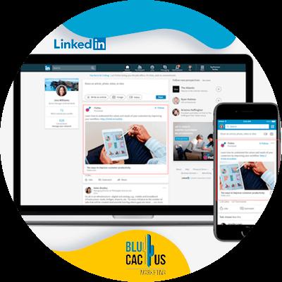 BluCactus - ¿Cómo crear tu Perfil de LinkedIn para Empresas? - linkedin mostrandose en una pagina web de internet con formulario y datos