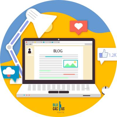 BluCactus - blog networks