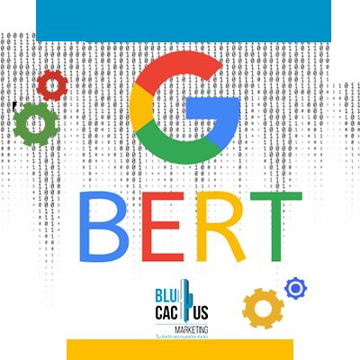 BluCactus - g bert formato