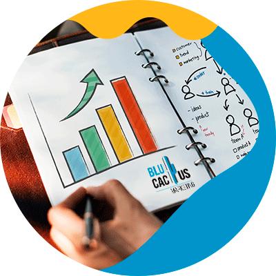 BluCactus - Plan de Marketing - dbujos de estardisicas con gráficos