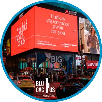 BluCactus - grandes formatos