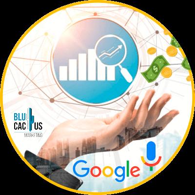 BluCactus -incremento de datos