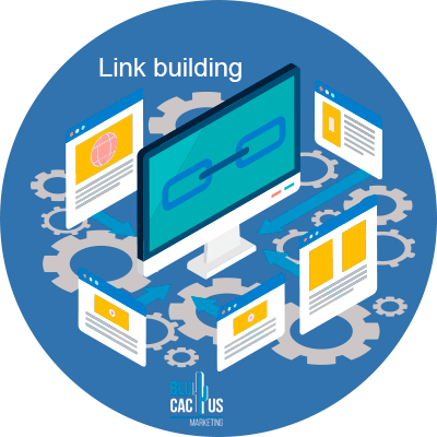 BluCactus - agree link building