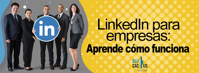 BluCactus - ¿Cómo crear tu Perfil de LinkedIn para Empresas? - titulo