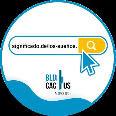 Blucactus - ¿Cómo Blucactus - ejemplos de dominios webmi dominio web? - ejejemplos de dominios web