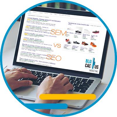 BluCactus - Diferencias entre SEO y SEM - computadora con informacion y datos importantes