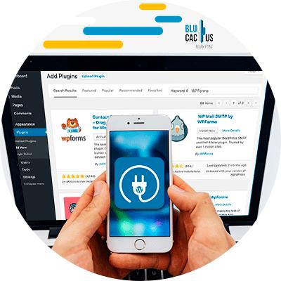 BluCactus - persona sosteniendo un celular