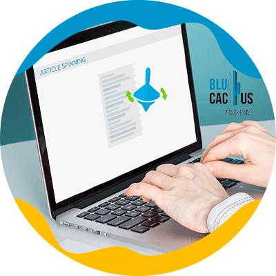BluCactus - ¿Qué es el Black Hat SEO? - computadora con información importante en ella