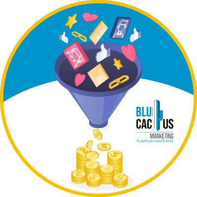 BluCactus - embudo de muchas cosas con dinero