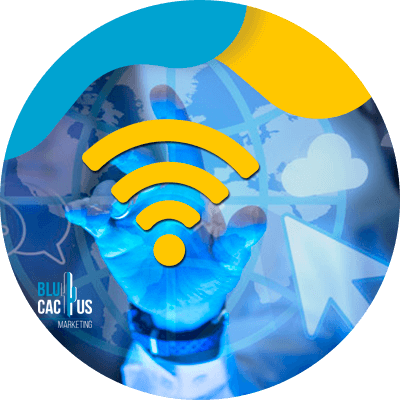 BluCactus - ancho de banda
