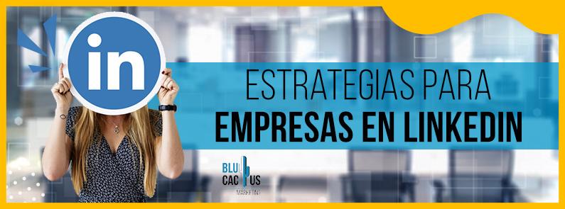 BluCactus - Estrategias para empresas en LinkedIn - titulo