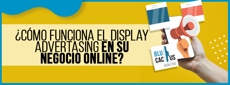 BluCactus - display advertising - titulo