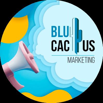 BluCactus - display advertising - negocio onnline