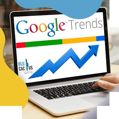 BluCactus - google trends