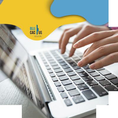 BluCactus - Hoe optimaliseert u de inhoud voor onze lezers en zoekmachines?