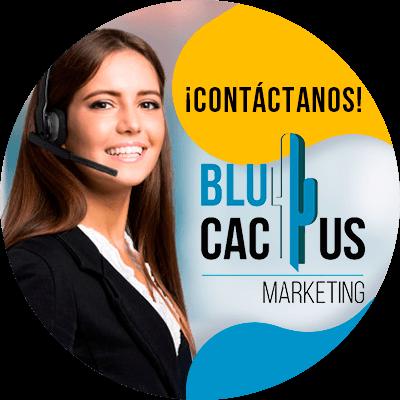BluCactus - contactenos