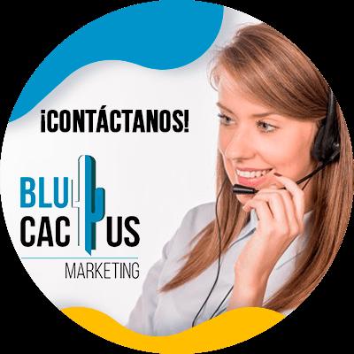 BluCactus - display advertising - contactenos