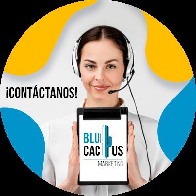 BluCactus -contactenos