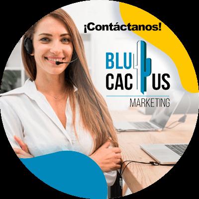BluCactus - ¿Qué es MOZ? - contacto