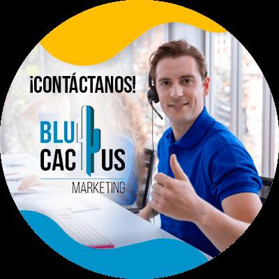BluCactus - ¿Qué es el Contenido Generado por el Usuario? - contacto