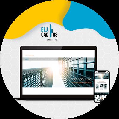BluCactus - Ontwerpt u aangepaste websites of gebruikt u sjablonen?
