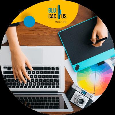 BluCactus - diseño web