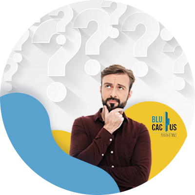 BluCactus - vragen voordat u een SEO-bureau inhuurt-33 vragen die u moet stellen voordat u een SEO-bureau inhuurt