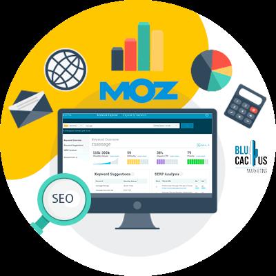 BluCactus - ¿Qué es MOZ? - keyword explorer