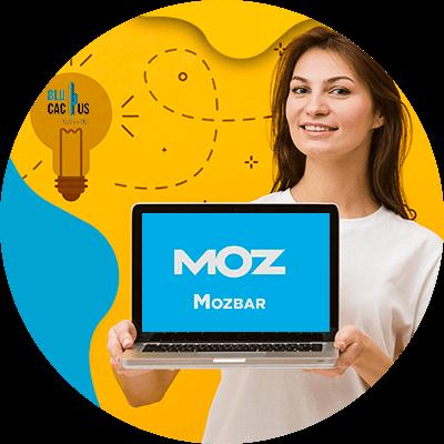 BluCactus - ¿Qué es MOZ? - la mozbar