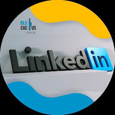 BluCactus - Estrategias para empresas en LinkedIn - herramienta