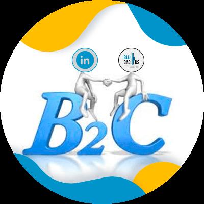 BluCactus - Estrategias para empresas en LinkedIn - btwoc