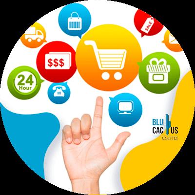 BluCactus -Biedt u e-commerce services aan?