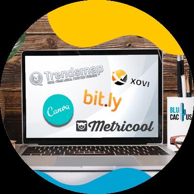 BluCactus - Community Manager - datos importantes