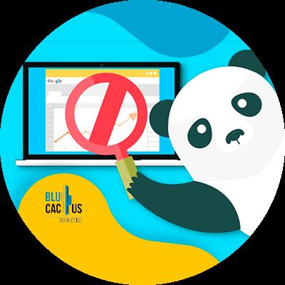 BluCactus - panda