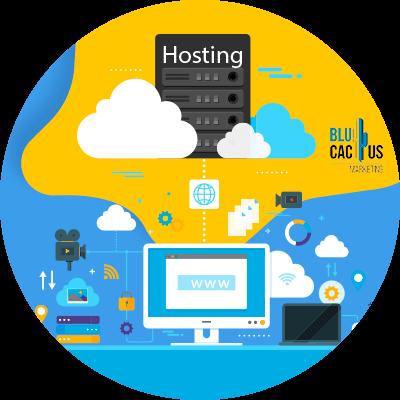 BluCactus - hosting web