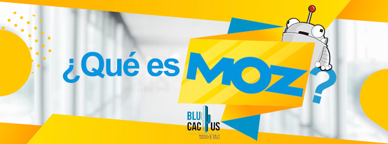 BluCactus - ¿Qué es MOZ? - titulo